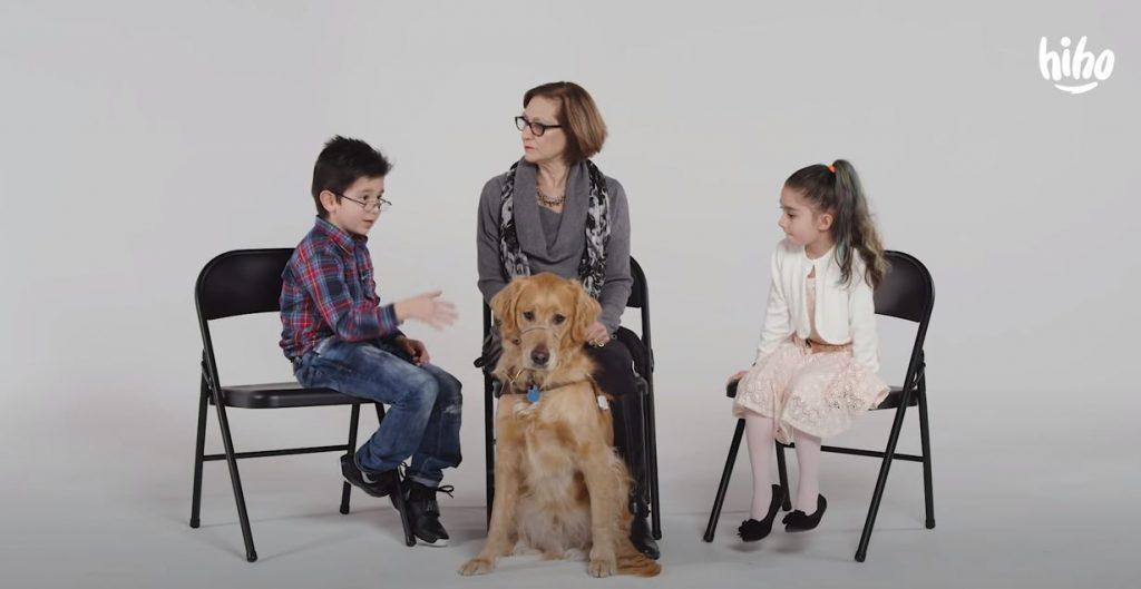 Kids Meet a Guide Dog for the Blind | Kids Meet | HiHo – Understanding