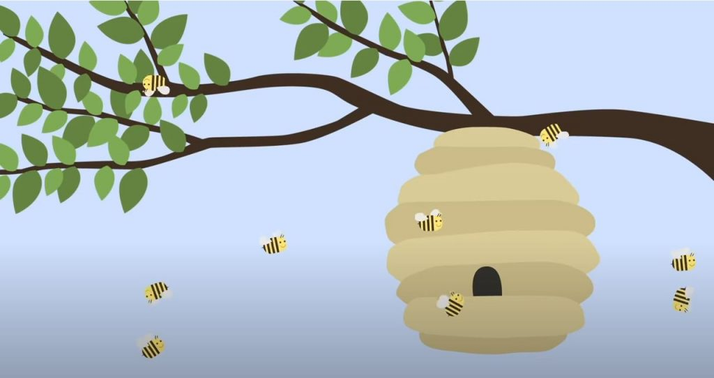 The Angry Bee| A Story About Forgiveness (suitable for Catholic primary)
